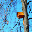 Beautiful wooden birdhouse feeder (nesting box) for birds hanging on a tree — Stock Photo #42290467