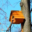 Beautiful wooden birdhouse feeder (nesting box) for birds hanging on a tree — Stock Photo #42290709