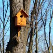 Beautiful wooden birdhouse feeder (nesting box) for birds hanging on a tree — Stock Photo #42290885