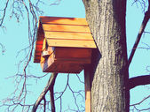 Beautiful wooden birdhouse feeder (nesting box) for birds hanging on a tree — Stock Photo