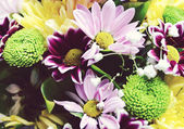 A bouquet of different colorful flowers clloseup — Photo