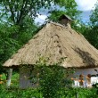 Old traditional Ukrainian house hata made from wood and straw — Stock Photo #48423883