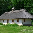Old traditional Ukrainian house hata made from wood and straw — Stock Photo #48423975