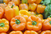 Sweet orange bell peppers — Stock Photo
