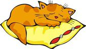 Sleeping Kitty with pillow — Stock Vector