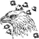 Eagle - sketch vector illustration isolated — Stock Vector