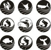 Fish Flat Icons — Stock vektor