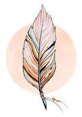 Illustrazione di piuma — Foto Stock