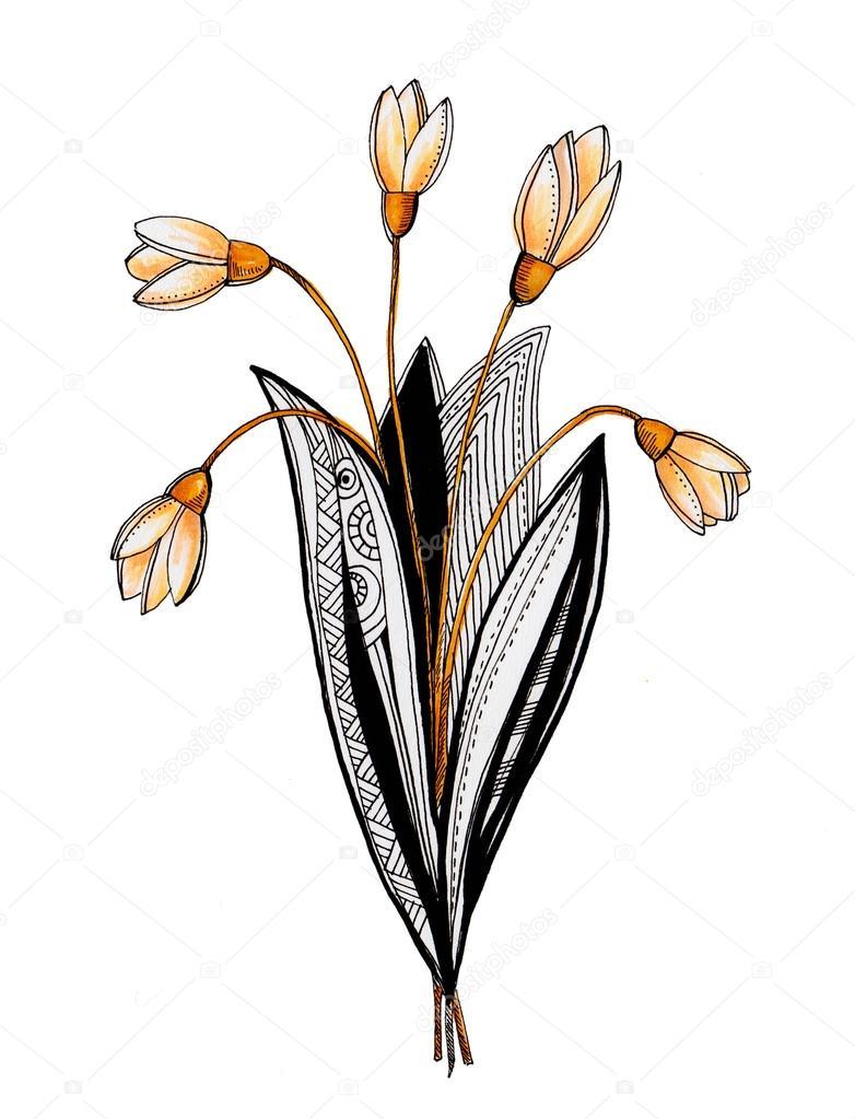 witte achtergrond tekening bloemen - photo #10