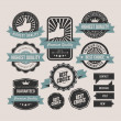 Vintage labels and ribbon retro style set — Stock Vector