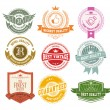 Set of vintage badges and labels — Stock Vector