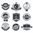 Set of vintage badges and labels — Stock Vector #36693495