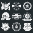 Retro Vintage Badges and Labels — Stock Vector