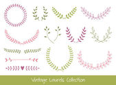 Vector Laurel Branches and Wreaths — Stock Vector