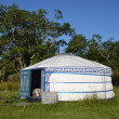 Yurt - Mongolian Ger — Stock Photo #38478455
