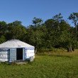Yurt - Mongolian Ger — Stock Photo #38478479