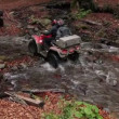 Quadbikes crossing river — Stock Video #37866451