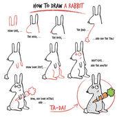 Cómo dibujar un conejo — Vector de stock
