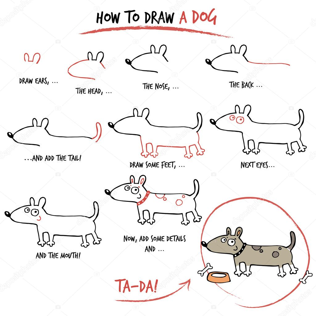 how to draw a canine