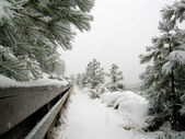 Walking at Lake Tahoe in the snowstorm — Stock Photo
