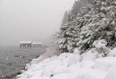 Snowstorm at Lake Tahoe — Stock Photo