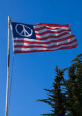 "A ""peace"" version of American flag 1 — Stock Photo"