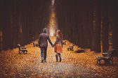 Couple in love walking on a beautiful autumn alley in the park — Stock Photo
