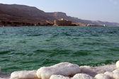 Mar Morto — Fotografia Stock