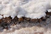Salt crystallisation — Stock Photo