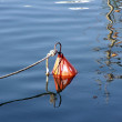Mooring buoy — Stock Photo #37288935