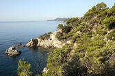Coast of the Mediterranean Sea — Stock Photo