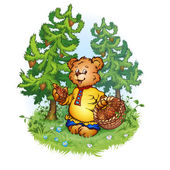 Bruin bear — Stock Vector