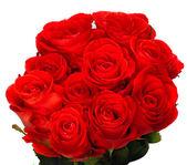 Красивый букет из красных роз — Стоковое фото