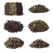 Tee-kollektion, die isoliert auf weißem hintergrund — Stockfoto