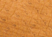 Brown leather texture or background — Stock Photo