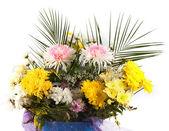 Flowers in flowerpot — Stock Photo