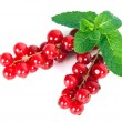 Red currant — Stock Photo #37310143