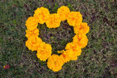 Place a heart-shaped yellow flowers, Valentine's Day hearts. — Stok fotoğraf