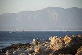 Walker Bay balıkçı tekneleri — Stok fotoğraf