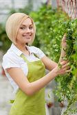 Woman gardening. — Stock Photo