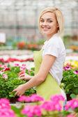 Woman in apron gardening — Stock Photo