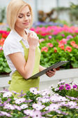 Working with flowers. — Stock Photo
