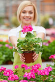 Woman in greenhouse — Stock Photo