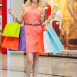 Happy woman shopping. — Stock Photo #45052397