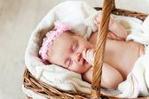 Lindo bebé en una cesta malvado — Foto de Stock