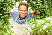 Happy gardener. — Stock Photo