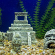 Maya vestiges in fish tank — Stock Photo