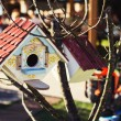 Colorful birdhouse among tree branches — Stock Photo