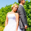Stock Photo: Bride and Groom Portraits