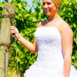 Stock Photo: Bride On Her Wedding Day